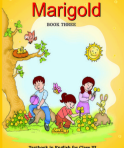 Marigold English Book Class 2